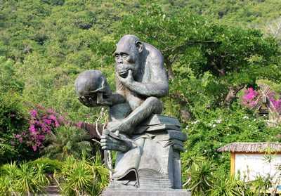 猴岛的标志雕塑,据说是一只猴子坐在达尔文的进化论上面,拿着一个人类